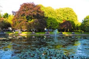 Fitzgerald Park en Cork