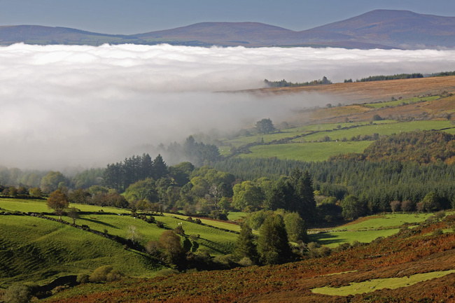Valle Nire (Waterford)